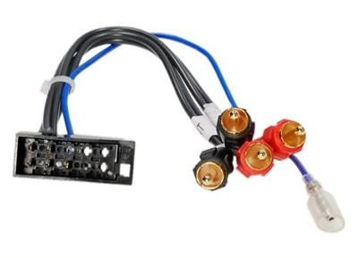 Passieve LOW LEVEL converter kabel 10-pin vrouwelijk > RCA